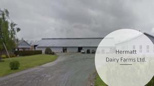 Hermatt Dairy Farms Ltd.